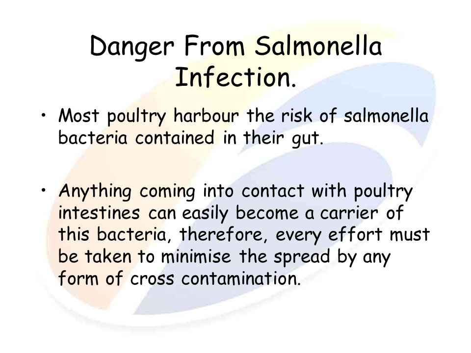 Danger From Salmonella Infection. Most poultry harbour the risk of salmonella bacteria contained in their gut. Anything coming into contact with poult