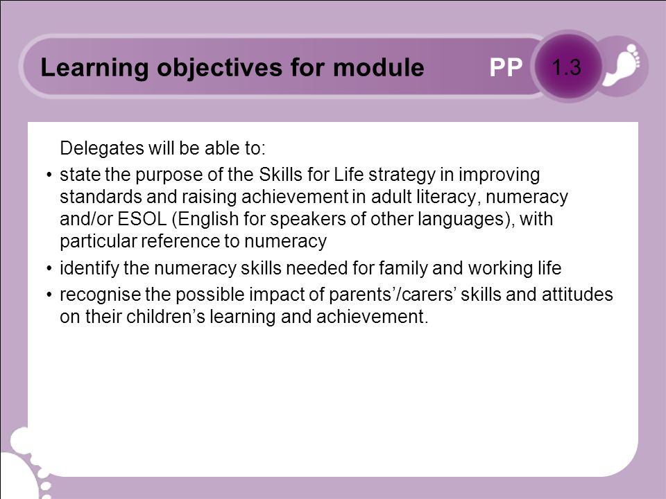 PP Programme outline Module 1: Raising awareness Module 2: Exploring numeracy Module 3: The role of the numeracy champion: identifying and supporting potential numeracy learners Module 4: Next steps 1.4
