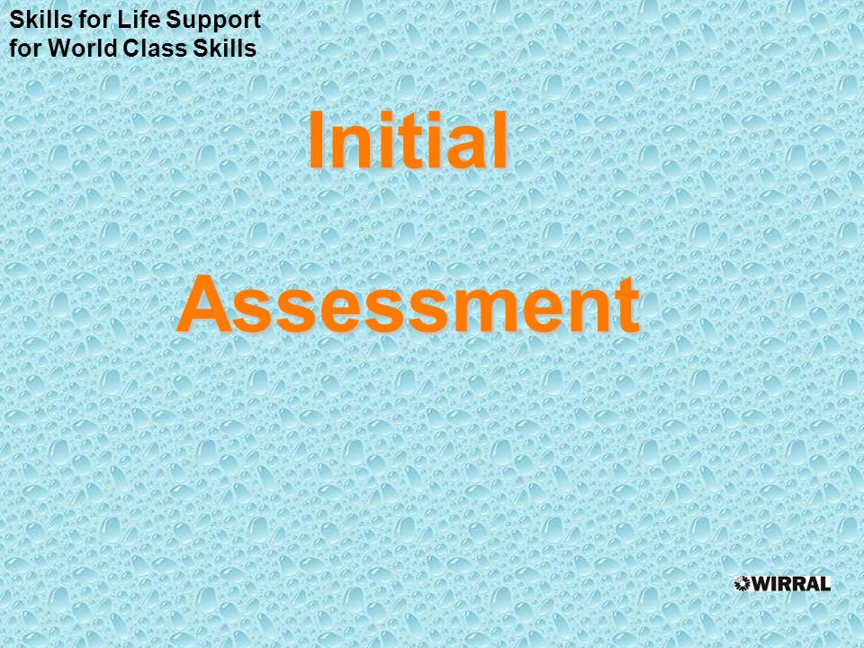 InitialAssessment Skills for Life Support for World Class Skills