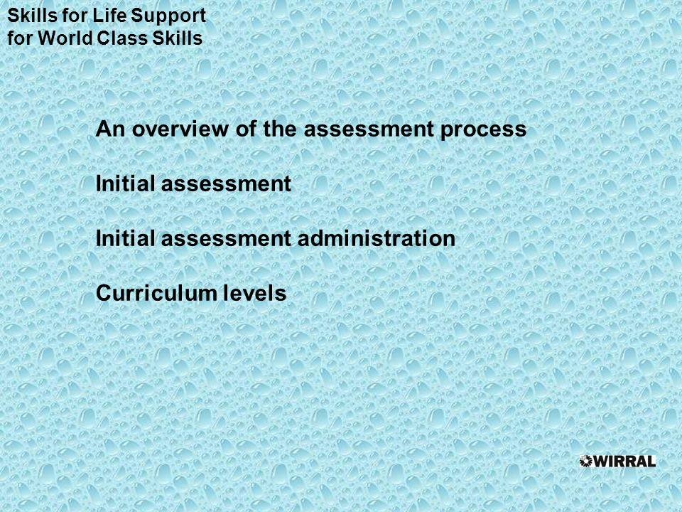 An overview of the assessment process Initial assessment Initial assessment administration Curriculum levels Skills for Life Support for World Class Skills