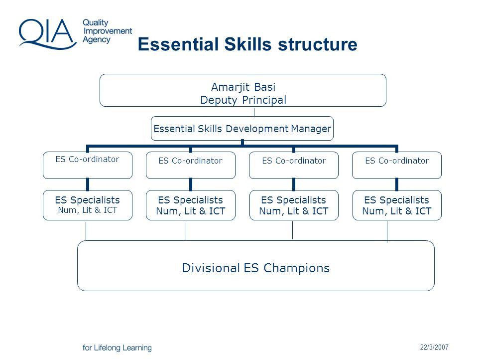 22/3/2007 Essential Skills structure Divisional ES Champions Amarjit Basi Deputy Principal