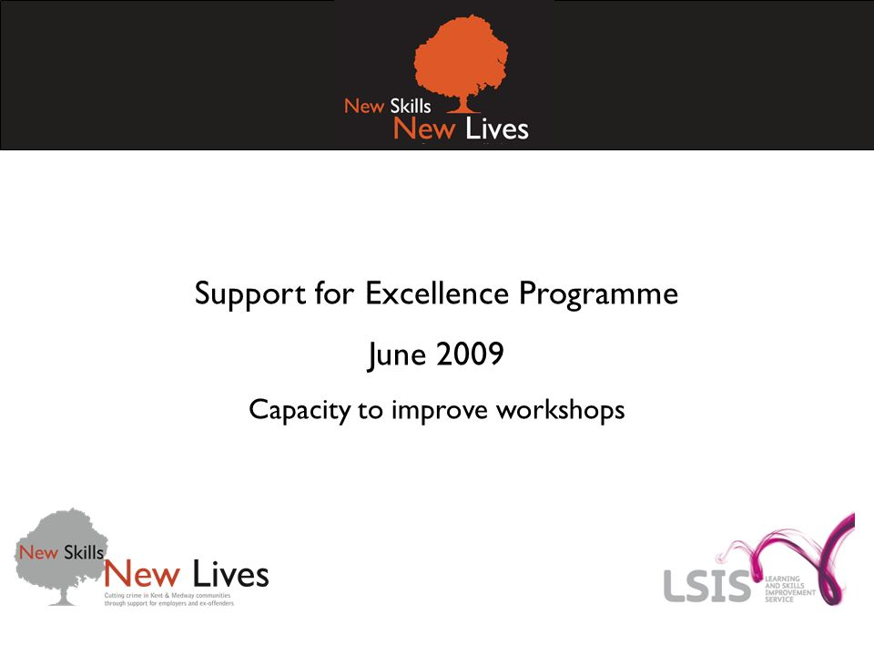 Support for Excellence Programme June 2009 Capacity to improve workshops