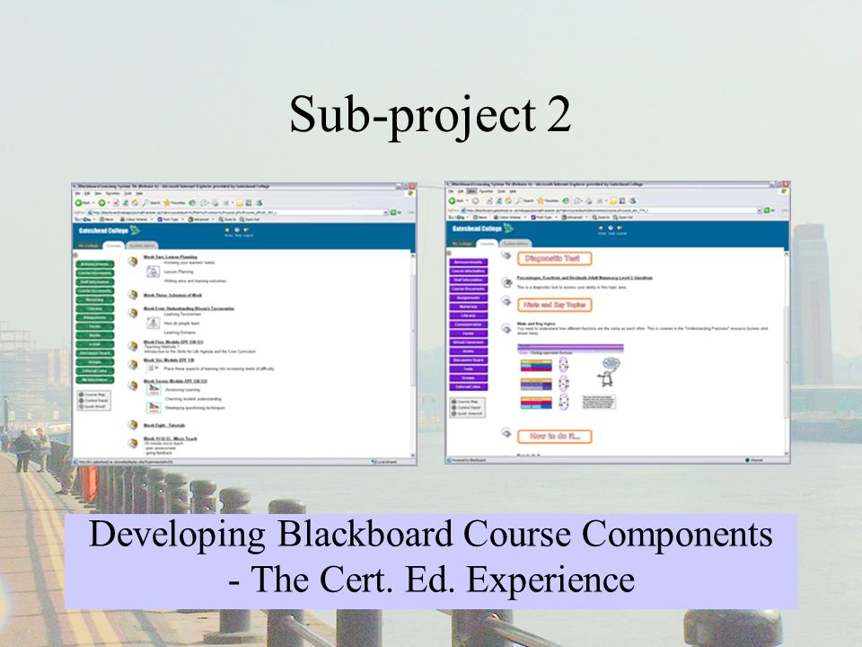 Sub-project 3 Introducing On-line Assessment