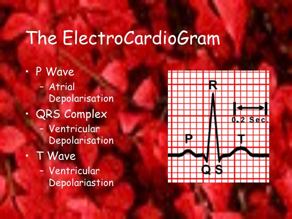 The ElectroCardioGram P Wave –Atrial Depolarisation QRS Complex –Ventricular Depolarisation T Wave –Ventricular Depolariastion