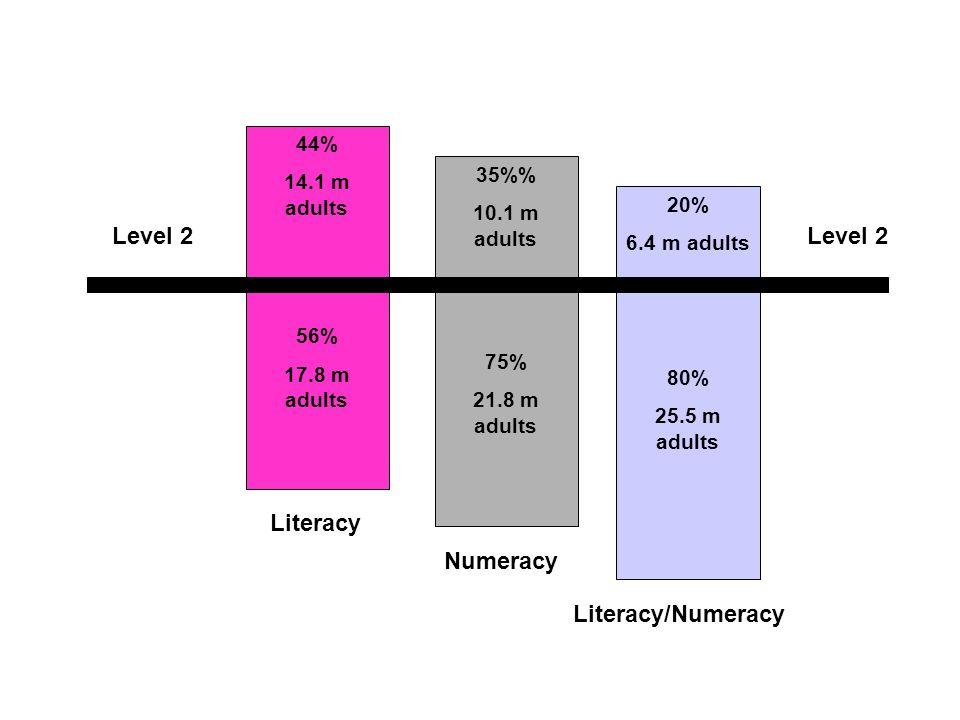 44% 14.1 m adults 56% 17.8 m adults 35% 10.1 m adults 75% 21.8 m adults 20% 6.4 m adults 80% 25.5 m adults Literacy Numeracy Literacy/Numeracy Level 2