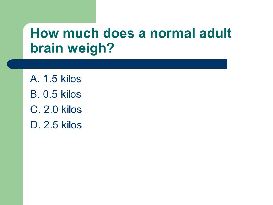 How much does a normal adult brain weigh? A. 1.5 kilos B. 0.5 kilos C. 2.0 kilos D. 2.5 kilos
