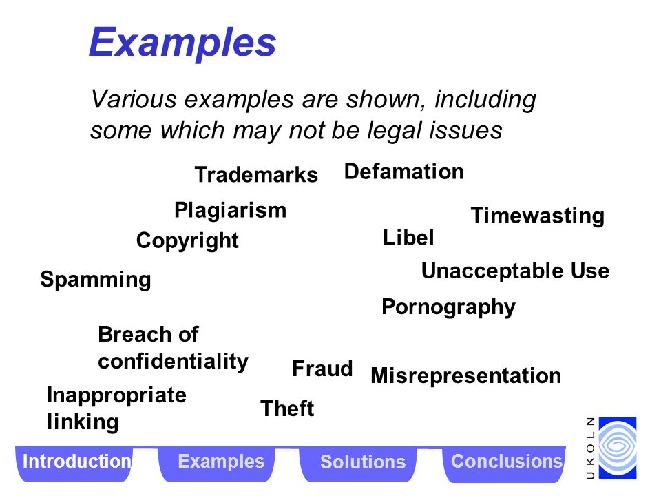 Examples Various examples are shown, including some which may not be legal issues Copyright Fraud Plagiarism Theft Breach of confidentiality Spamming