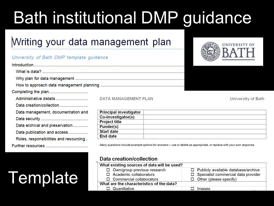 Bath institutional DMP guidance Template
