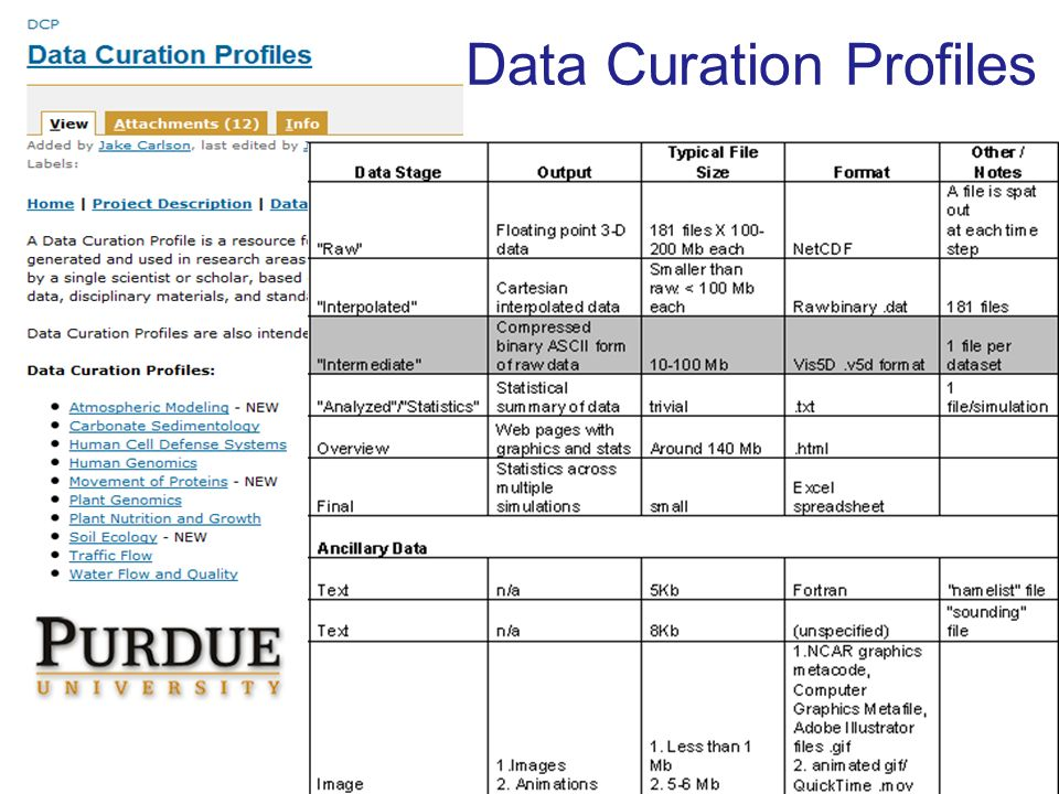 Data Curation Profiles