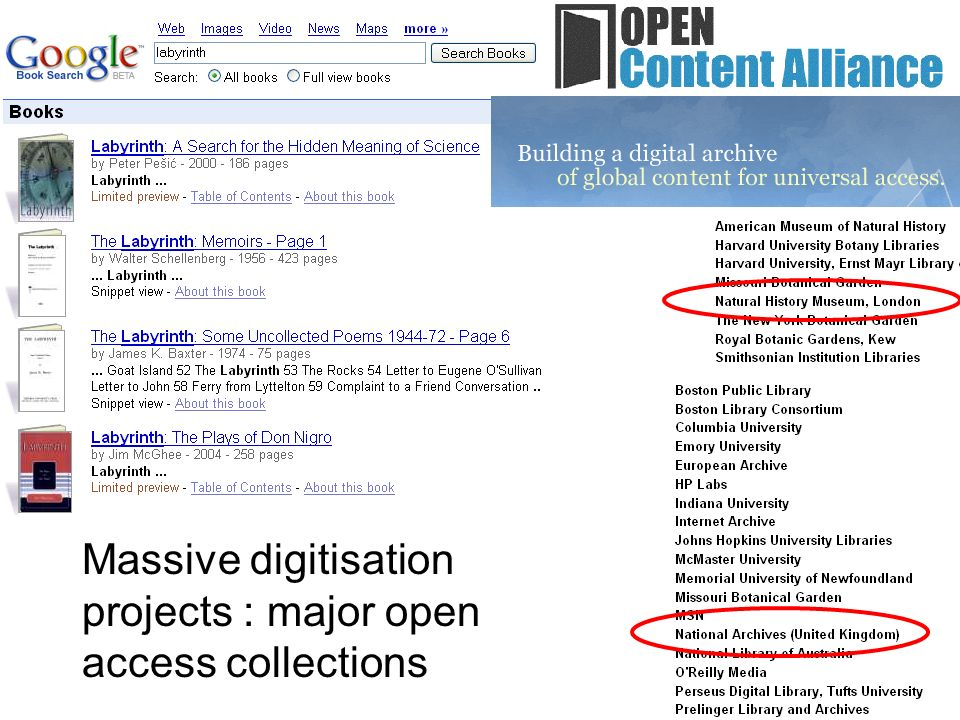 Massive digitisation projects : major open access collections