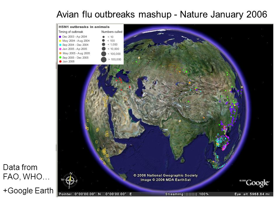 Avian flu outbreaks mashup - Nature January 2006 Data from FAO, WHO… +Google Earth