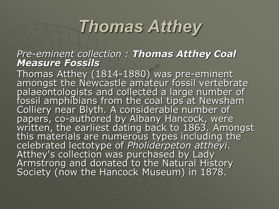 Thomas Atthey Pre-eminent collection : Thomas Atthey Coal Measure Fossils Thomas Atthey (1814-1880) was pre-eminent amongst the Newcastle amateur foss