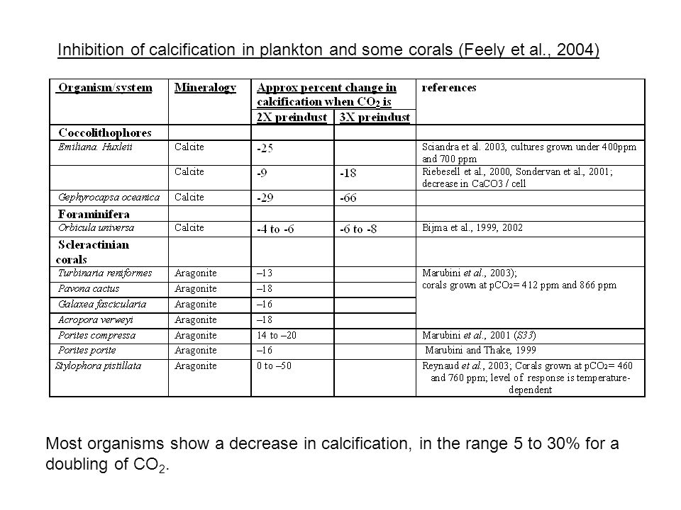 Inhibition of calcification in plankton and some corals (Feely et al., 2004) Most organisms show a decrease in calcification, in the range 5 to 30% fo