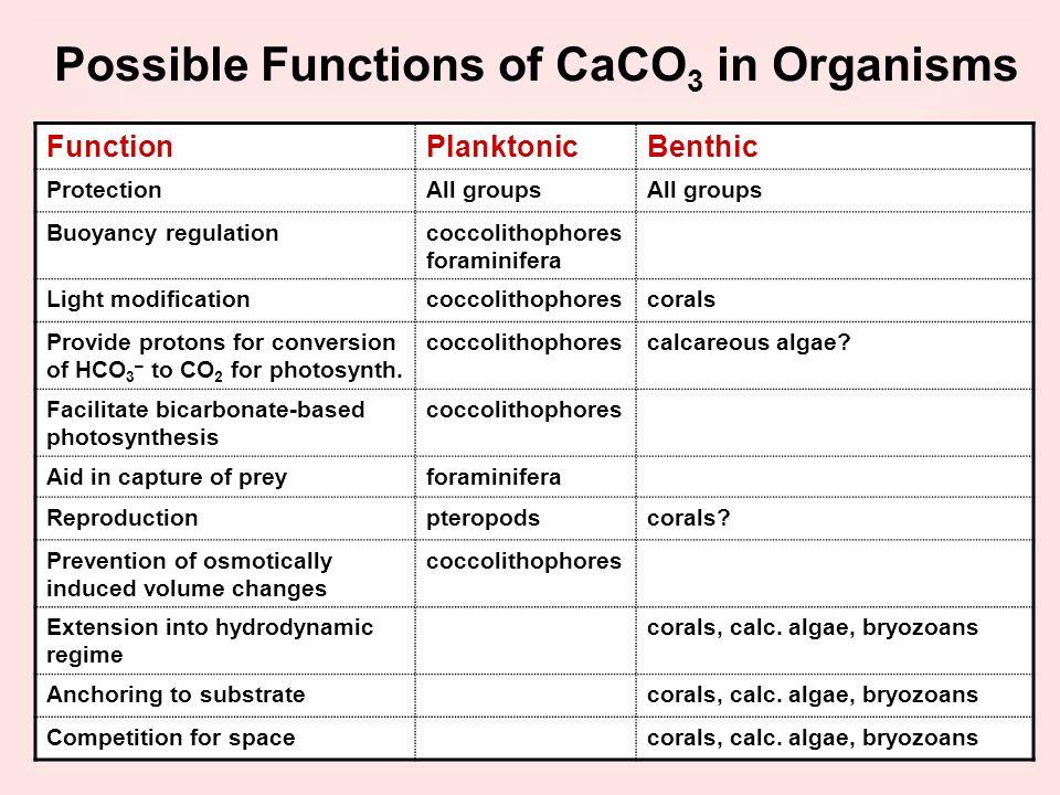 FunctionPlanktonicBenthic ProtectionAll groups Buoyancy regulationcoccolithophores foraminifera Light modificationcoccolithophorescorals Provide proto