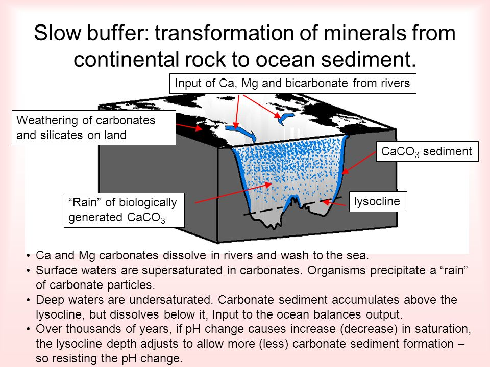 Slow buffer: transformation of minerals from continental rock to ocean sediment. CaCO 3 sedimentlysoclineInput of Ca, Mg and bicarbonate from rivers W