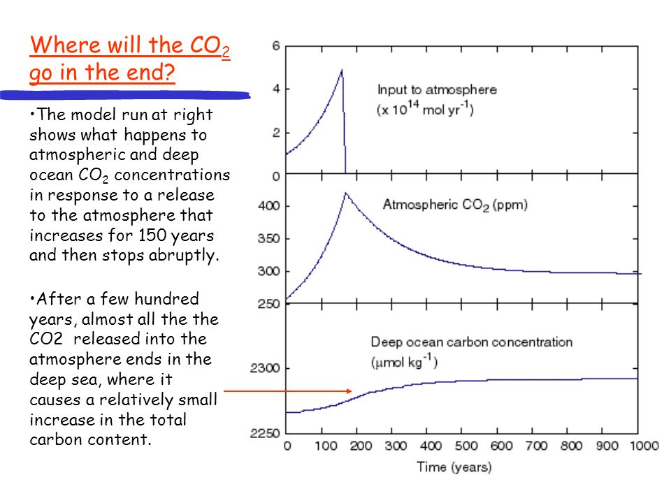 After a few hundred years, almost all the the CO2 released into the atmosphere ends in the deep sea, where it causes a relatively small increase in the total carbon content.