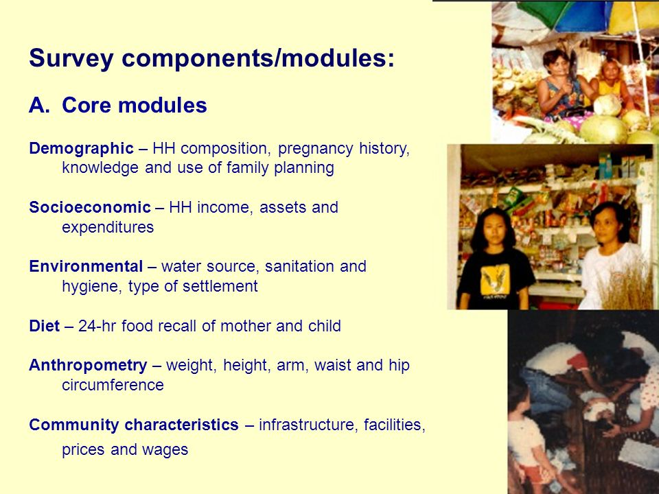 Survey components/modules: A.Core modules Demographic – HH composition, pregnancy history, knowledge and use of family planning Socioeconomic – HH income, assets and expenditures Environmental – water source, sanitation and hygiene, type of settlement Diet – 24-hr food recall of mother and child Anthropometry – weight, height, arm, waist and hip circumference Community characteristics – infrastructure, facilities, prices and wages