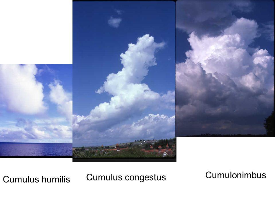 Cumulus humilis Cumulus congestus Cumulonimbus