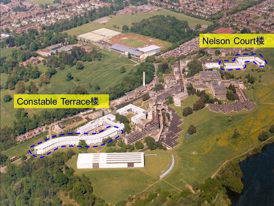 Nelson Court Constable Terrace