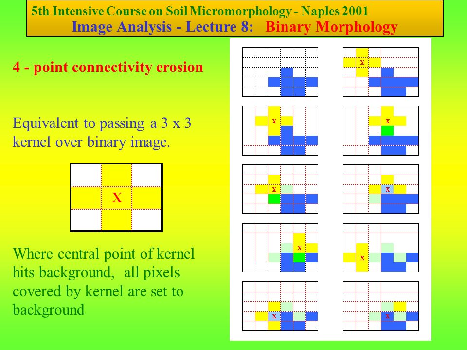 5th Intensive Course on Soil Micromorphology - Naples 2001 Image Analysis - Lecture 8: Binary Morphology 4 - point connectivity erosion Equivalent to passing a 3 x 3 kernel over binary image.