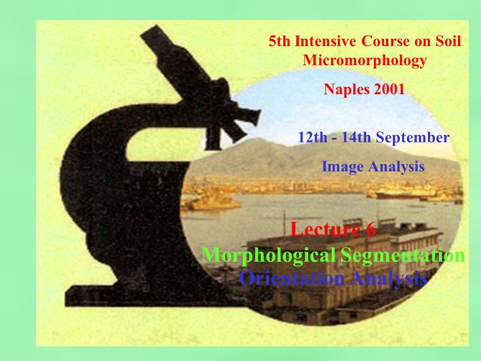 5th Intensive Course on Soil Micromorphology - Naples 2001 Image Analysis - Lecture 6: Morphological Segmentation Image 3: High degree of localised orientation but random otherwise