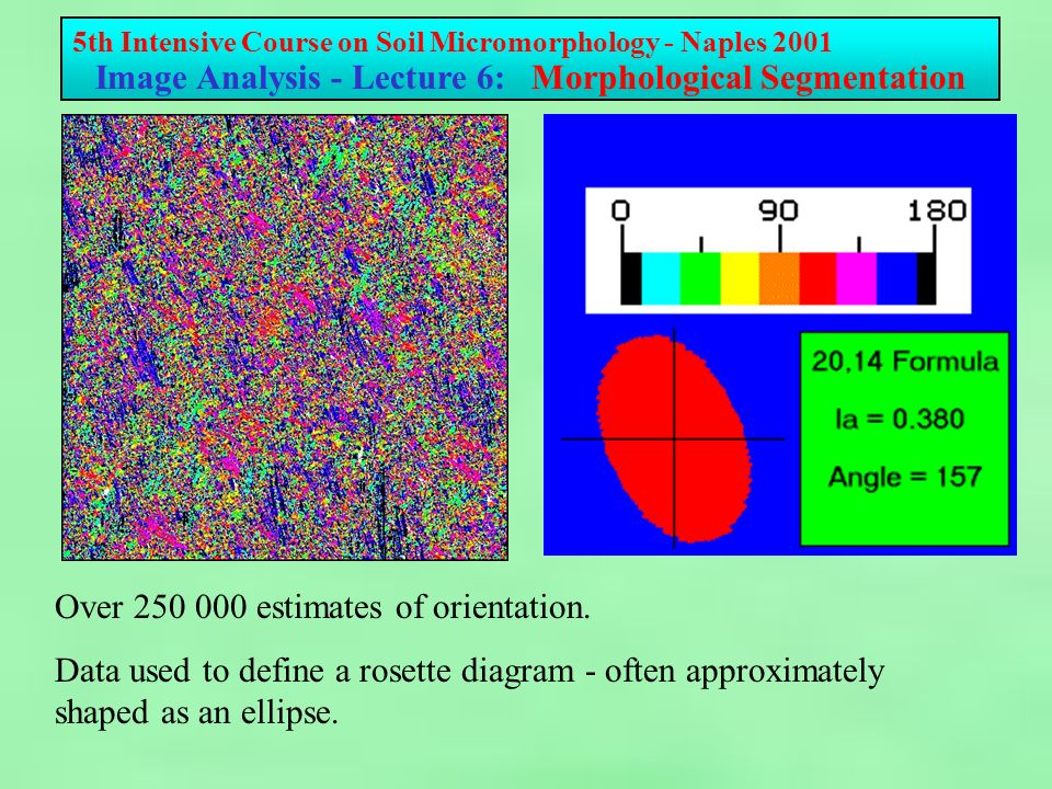 5th Intensive Course on Soil Micromorphology - Naples 2001 Image Analysis - Lecture 6: Morphological Segmentation Over estimates of orientation.