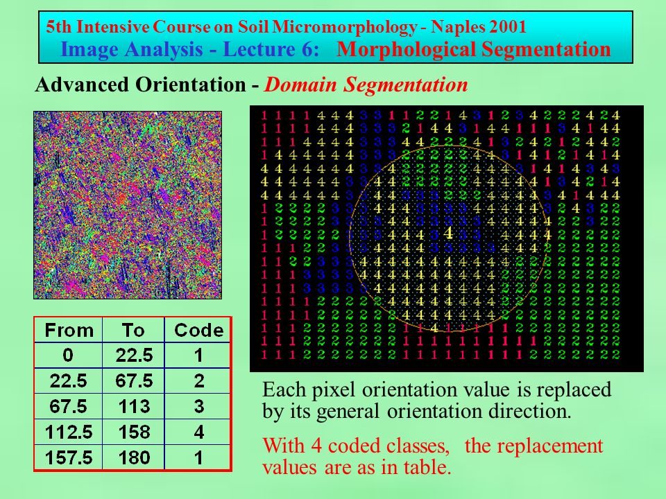 5th Intensive Course on Soil Micromorphology - Naples 2001 Image Analysis - Lecture 6: Morphological Segmentation Advanced Orientation - Domain Segmentation Each pixel orientation value is replaced by its general orientation direction.