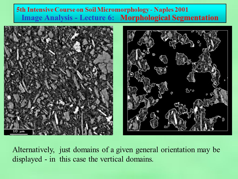 5th Intensive Course on Soil Micromorphology - Naples 2001 Image Analysis - Lecture 6: Morphological Segmentation Alternatively, just domains of a given general orientation may be displayed - in this case the vertical domains.