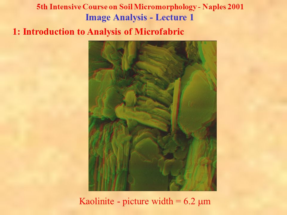 5th Intensive Course on Soil Micromorphology - Naples 2001 Image Analysis - Lecture 1 1: Introduction to Analysis of Microfabric Kaolinite - picture width = 6.2 m