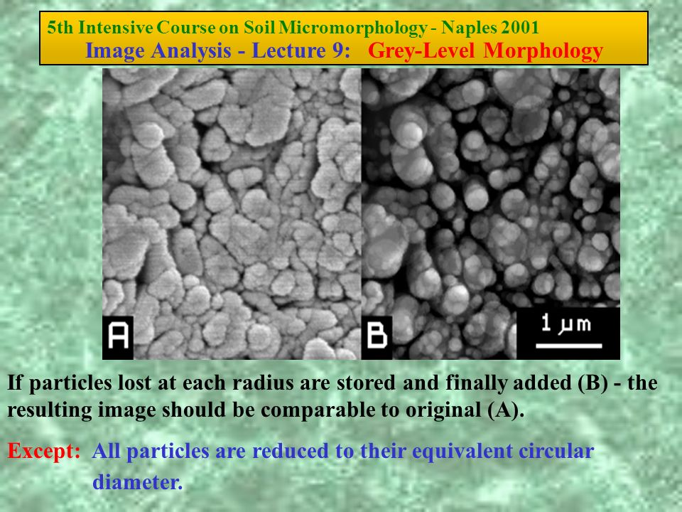 5th Intensive Course on Soil Micromorphology - Naples 2001 Image Analysis - Lecture 9: Grey-Level Morphology If particles lost at each radius are stor