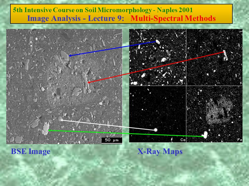 5th Intensive Course on Soil Micromorphology - Naples 2001 Image Analysis - Lecture 9: Multi-Spectral Methods BSE ImageX-Ray Maps