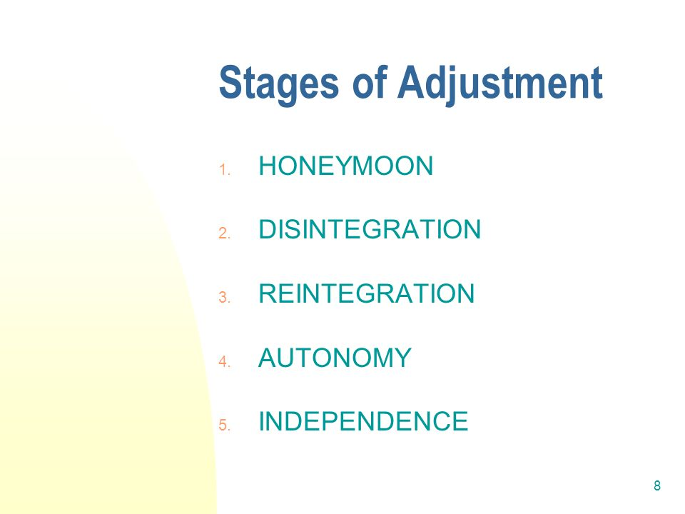 8 Stages of Adjustment 1. HONEYMOON 2. DISINTEGRATION 3. REINTEGRATION 4. AUTONOMY 5. INDEPENDENCE
