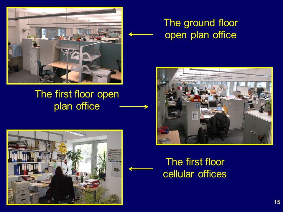 The ground floor open plan office The first floor open plan office The first floor cellular offices 15