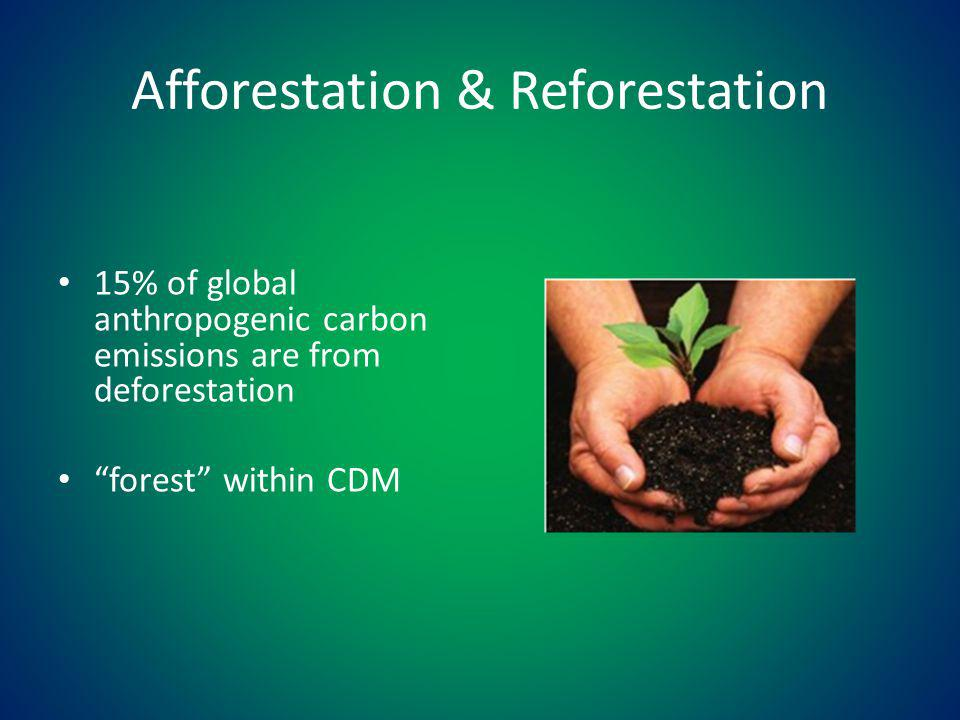 Afforestation & Reforestation 15% of global anthropogenic carbon emissions are from deforestation forest within CDM