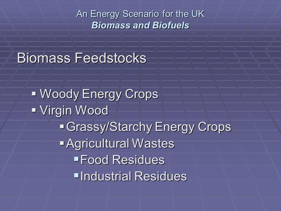 Biomass Feedstocks Woody Energy Crops Woody Energy Crops Virgin Wood Virgin Wood Grassy/Starchy Energy Crops Grassy/Starchy Energy Crops Agricultural Wastes Agricultural Wastes Food Residues Food Residues Industrial Residues Industrial Residues