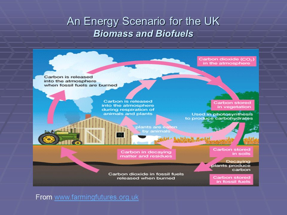 An Energy Scenario for the UK Biomass and Biofuels From www.farmingfutures.org.ukwww.farmingfutures.org.uk
