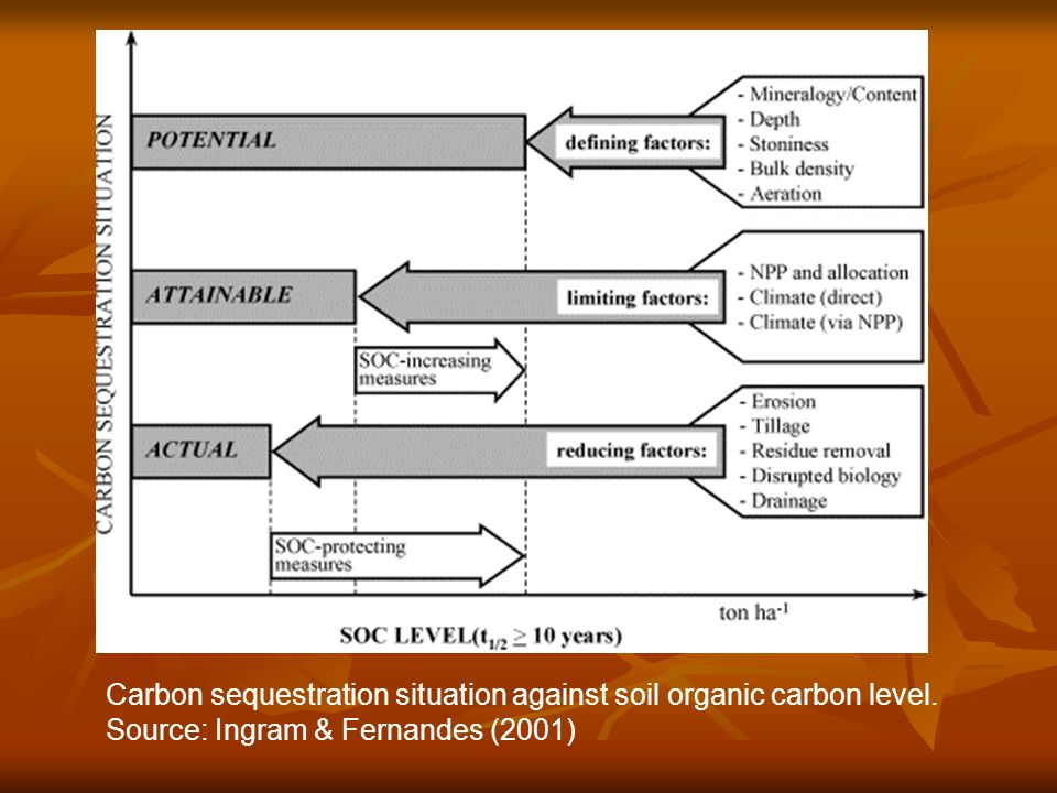 Carbon sequestration situation against soil organic carbon level. Source: Ingram & Fernandes (2001)