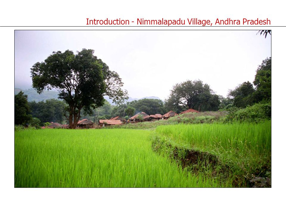 Introduction - Nimmalapadu Village, Andhra Pradesh