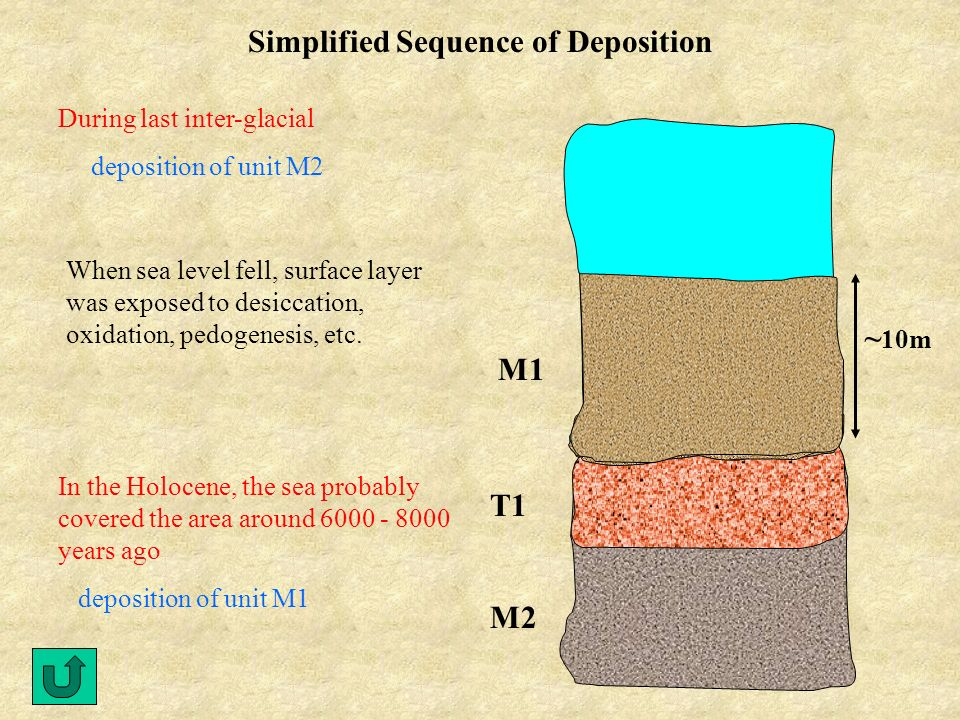 Simplified Sequence of Deposition During last inter-glacial deposition of unit M2 When sea level fell, surface layer was exposed to desiccation, oxidation, pedogenesis, etc.