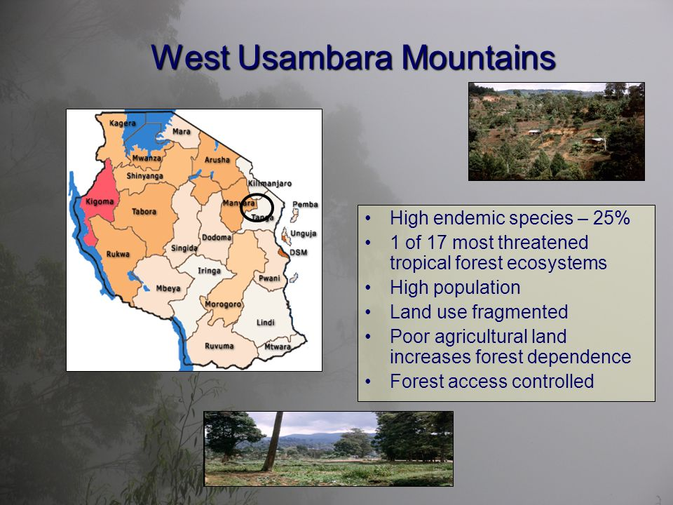 West Usambara Mountains High endemic species – 25% 1 of 17 most threatened tropical forest ecosystems High population Land use fragmented Poor agricultural land increases forest dependence Forest access controlled