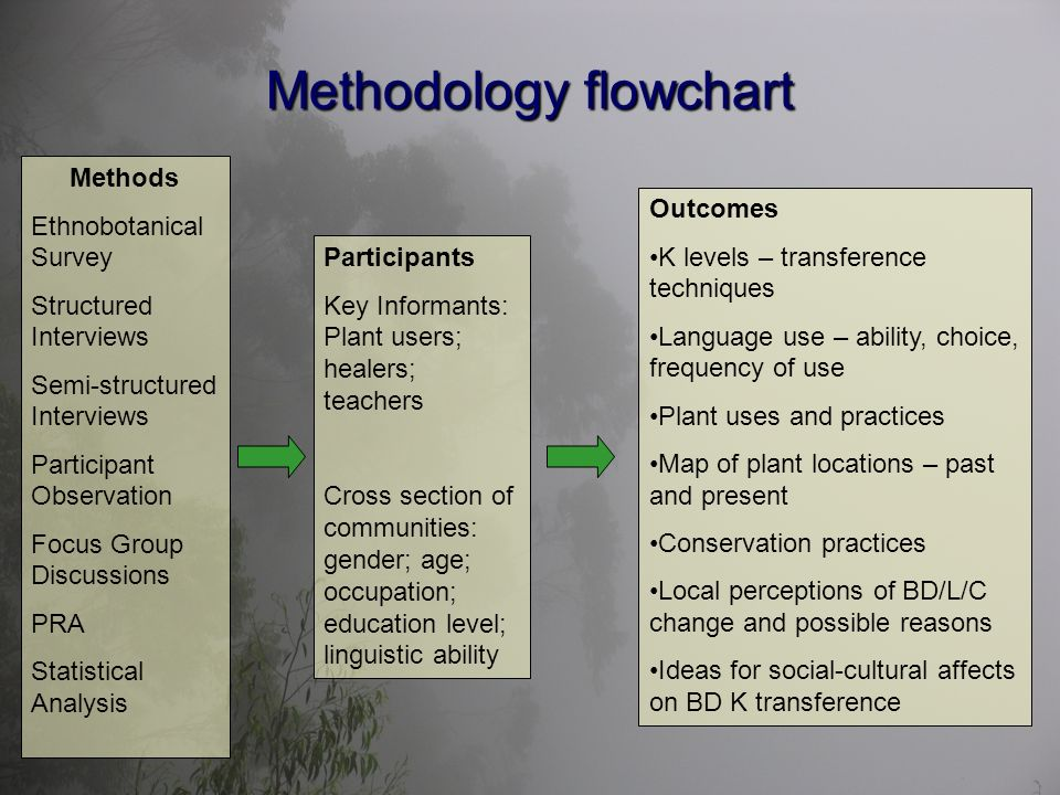 Methodology flowchart Methods Ethnobotanical Survey Structured Interviews Semi-structured Interviews Participant Observation Focus Group Discussions PRA Statistical Analysis Participants Key Informants: Plant users; healers; teachers Cross section of communities: gender; age; occupation; education level; linguistic ability Outcomes K levels – transference techniques Language use – ability, choice, frequency of use Plant uses and practices Map of plant locations – past and present Conservation practices Local perceptions of BD/L/C change and possible reasons Ideas for social-cultural affects on BD K transference