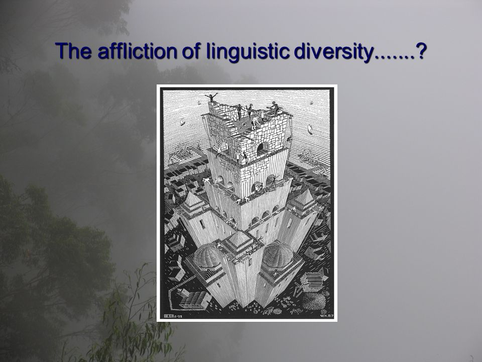 The affliction of linguistic diversity.......