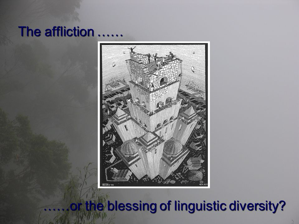 The affliction …… ……or the blessing of linguistic diversity