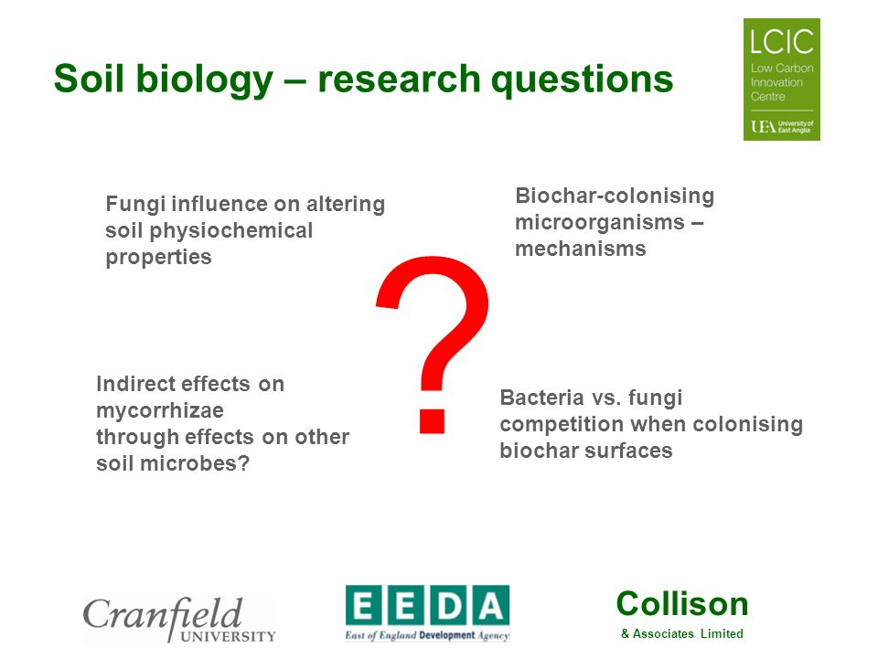 Collison & Associates Limited Soil biology – research questions ? Biochar-colonising microorganisms – mechanisms Bacteria vs. fungi competition when c