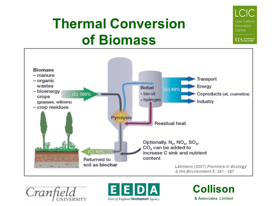 Collison & Associates Limited Thermal Conversion of Biomass Lehmann (2007) Frontiers in Ecology & the Environment 5: 381 - 387