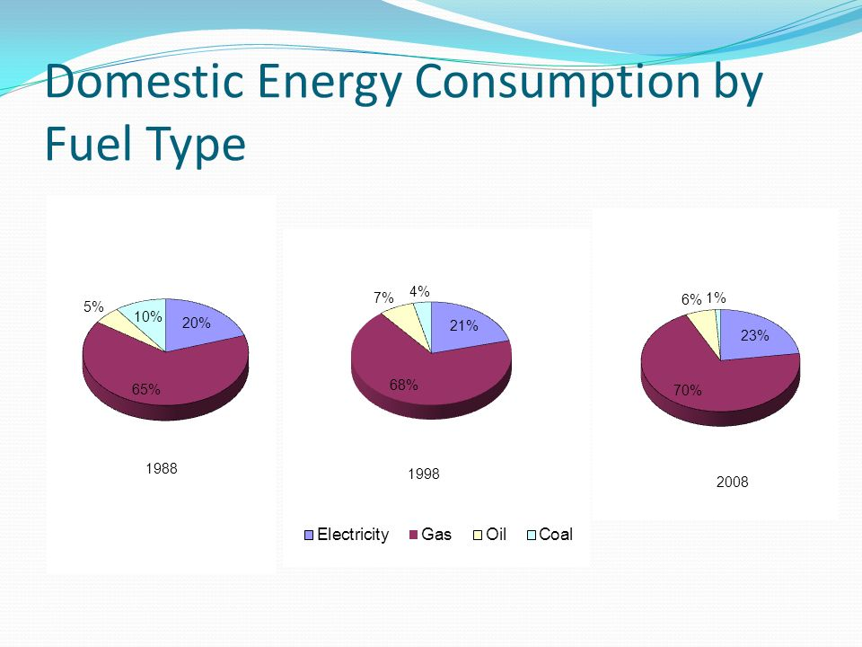 Domestic Energy Consumption by Fuel Type