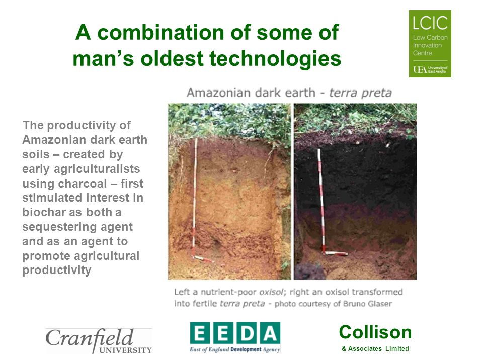 Collison & Associates Limited A combination of some of mans oldest technologies The productivity of Amazonian dark earth soils – created by early agri