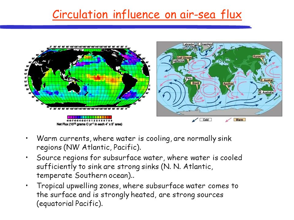 Circulation influence on air-sea flux Warm currents, where water is cooling, are normally sink regions (NW Atlantic, Pacific). Source regions for subs