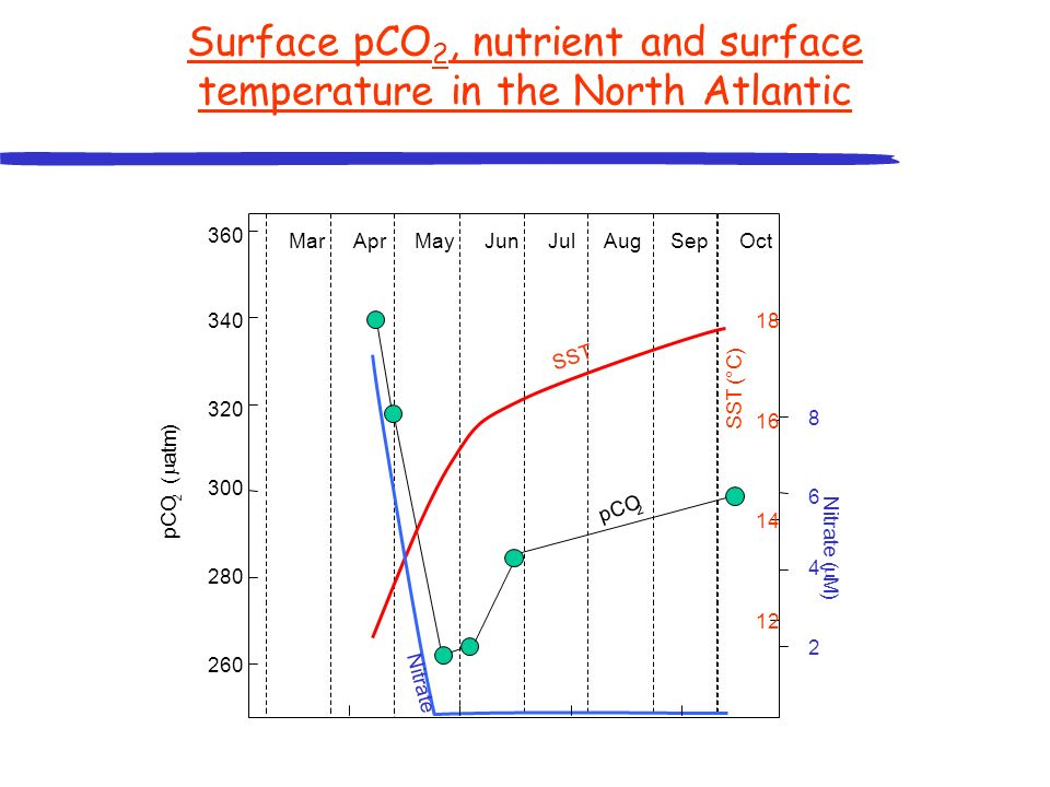 Surface pCO 2, nutrient and surface temperature in the North Atlantic 360 340 320 300 280 260 2 4 6 8 12 14 16 18 pCO 2 ( atm ) Nitrate ( M ) SST (°C)