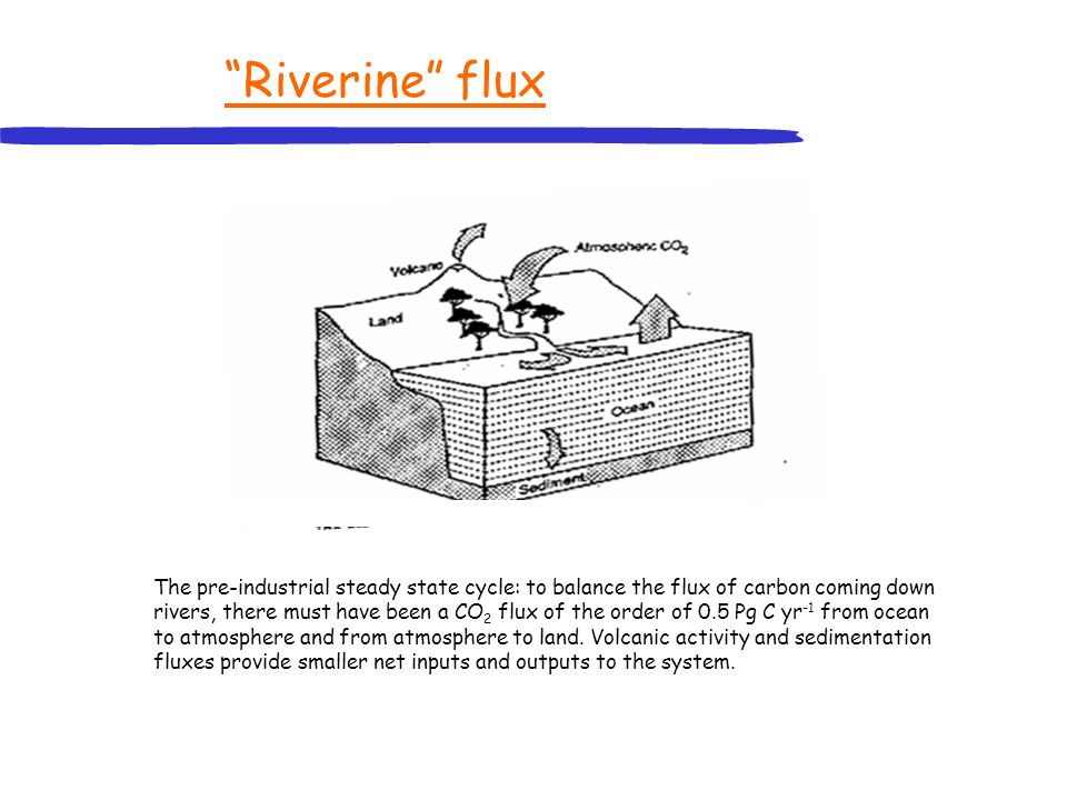 Riverine flux The pre-industrial steady state cycle: to balance the flux of carbon coming down rivers, there must have been a CO 2 flux of the order o